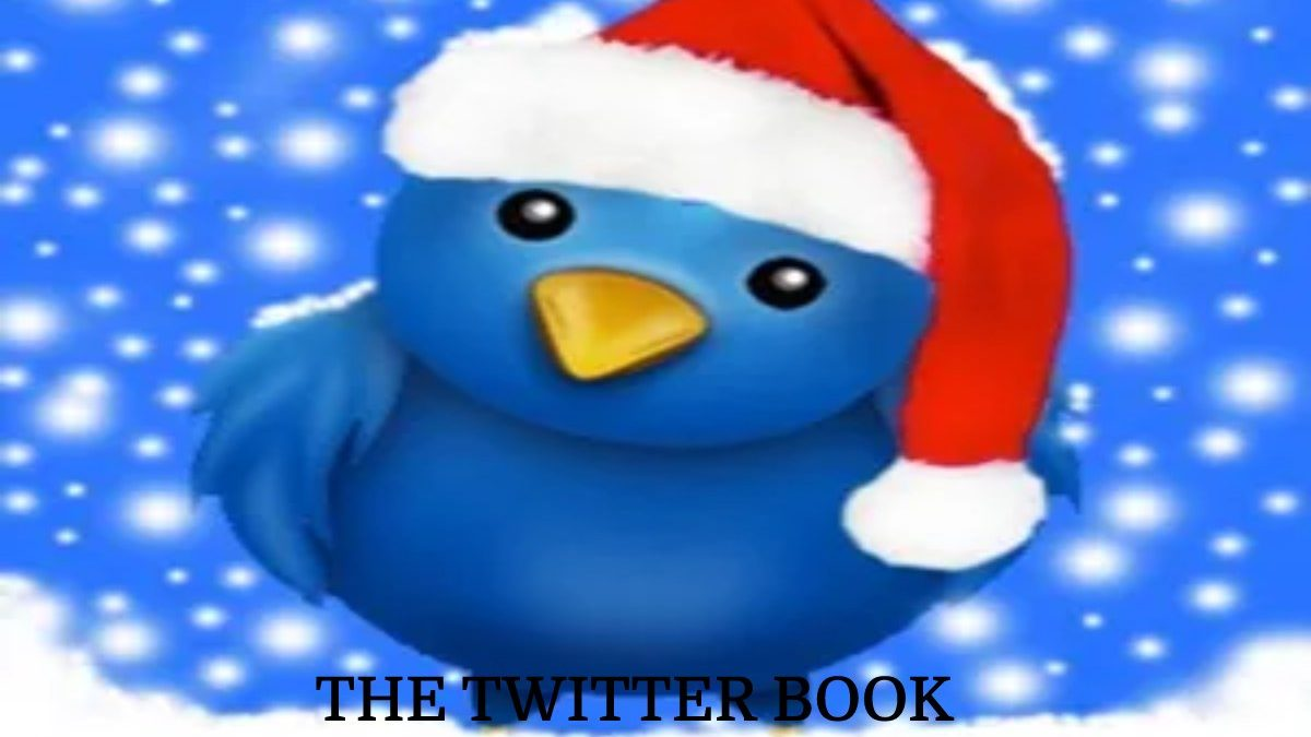 THE TWITTER BOOK, Summary, Synopsis, And More